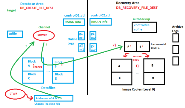 Recovery Area & Recommended Backup Strategy for Oracle Databases