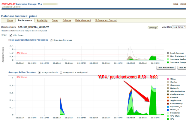 CPU peak on EM Performance page