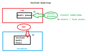 Unified Auditing